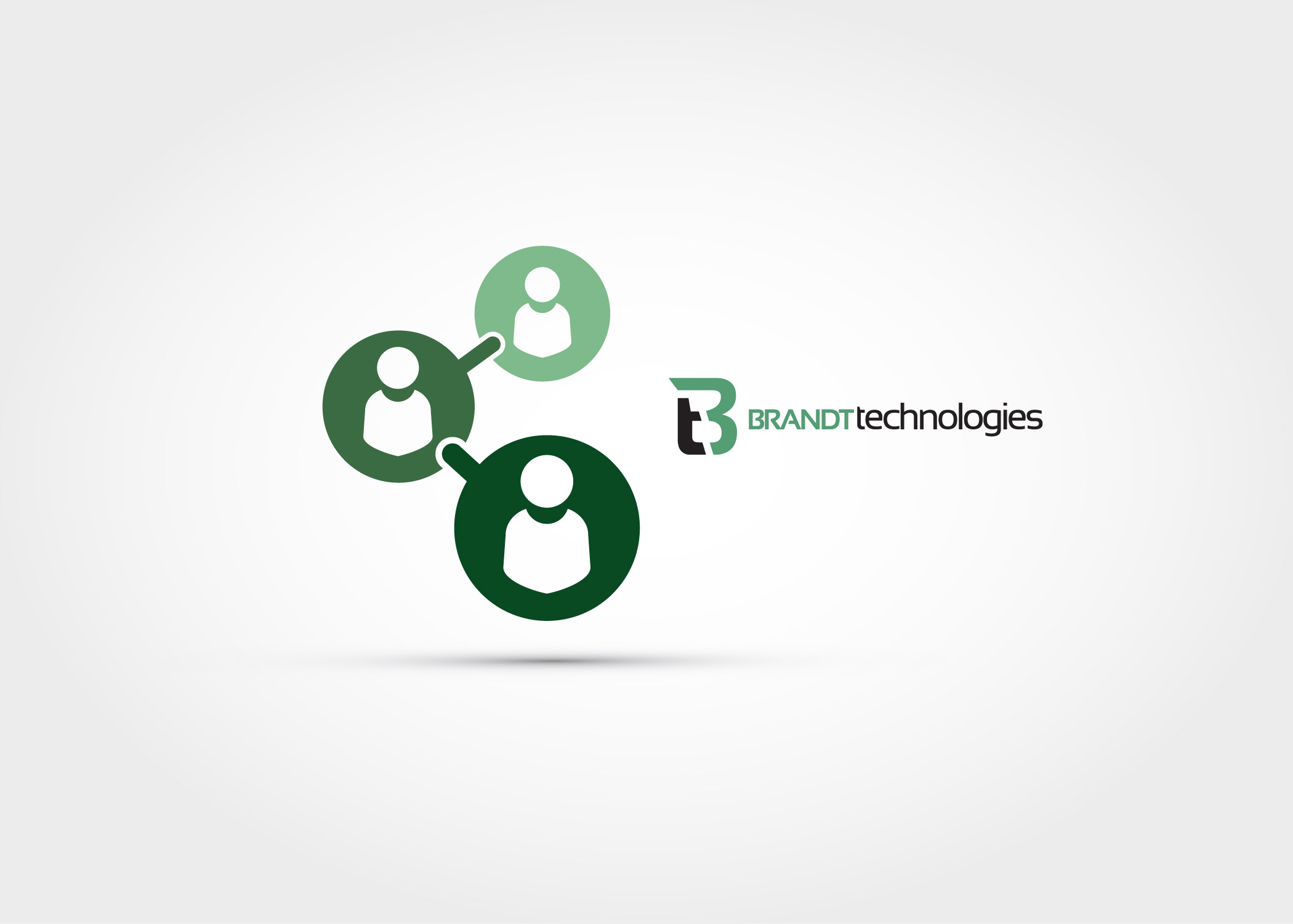 Brandt Technologies Connections